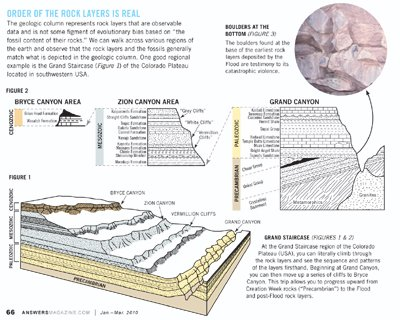 19.1 the fossil record pdf answers